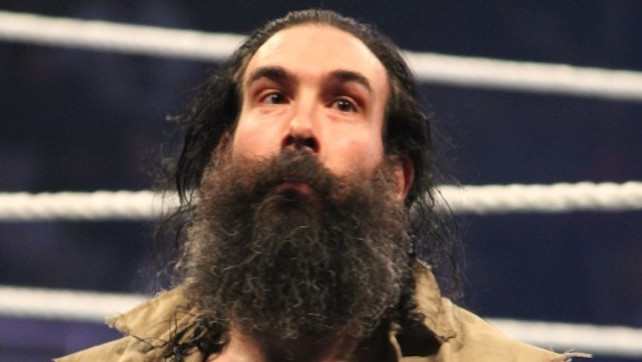 luke harper bludgeon brothers