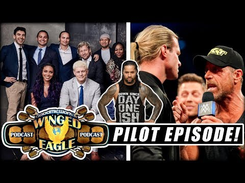 Jimmy Uso Arrested AGAIN | Ziggler vs HBK? | SummerSlam Preview | AEW TV Handbook
