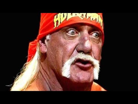 WWE Wrestlers and Hall of Famers Shoot on Hulk Hogan (Compilation) Wrestling Shoot Interview