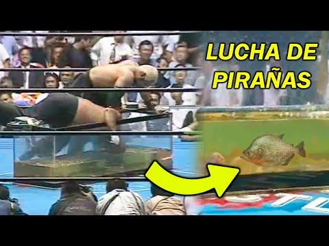 8 ESTIPULACIONES DE LUCHAS QUE WWE JAMÁS HARÁ