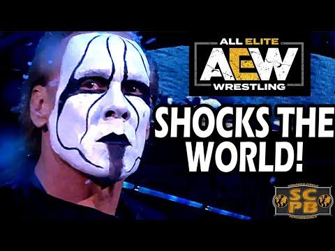 Kenny Omega Wins AEW Title & Sting Makes Debut & Shocks Wrestling World