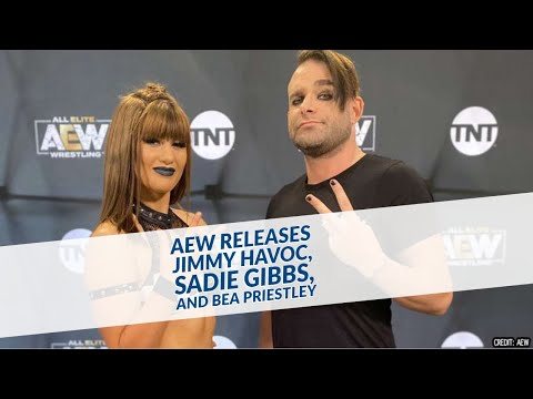 AEW Releases Jimmy Havoc, Sadie Gibbs, And Bea Priestley
